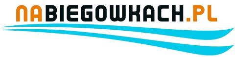 logo-nabiegowkach-pl-1000x320-page-001 - Kopia.jpeg
